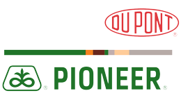 Logo for DuPont Pioneer